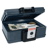 First Alert 2013F Fire and Water Chest, 0.17 Cubic Foot