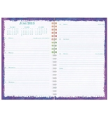 Day-Timer Flavia Weekly and Monthly Wire-Bound Personal Organizer, 5.5 x 8.5 Inches, January 2013 Start (D09420-1301)