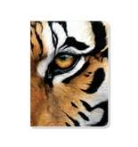 ECOeverywhere Tiger Eye Journal, 160 Pages, 7.625 x 5.625 Inches, Multicolored (jr12330)