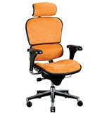 ERGOHUMAN HI LE9ERG FABRX PROGRAM CHAIR