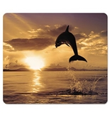Fellowes 5913401 Recycled Mouse Pad, Nonskid Base, 7-1/2 x 9, Dolphin