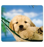 Fellowes 5913901, Recycled Optical Mouse Pad, Non-Skid, Dogs/Multi