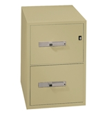 Phoenix 2 drawer legal size vertical fire file, 31- deep, can file legal and letter size, key lock