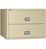 "Phoenix 2 drawer lateral fire file, 38"" wide, legal and letter size, key lock"
