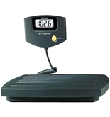 Royal EX310 300lb. Platform Scale