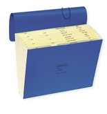 Wilson Jones ColorLife Expanding File, Without Flap, Monthly Index, 12 x 10 Inches, Dark Blue (WCCC17M-BL)