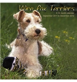 Wire Fox 2012 Wall Calendar #DOG50