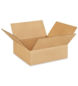 "10"" x 10"" x 3"" Flat Corrugated Boxes (Bundle of 25)"
