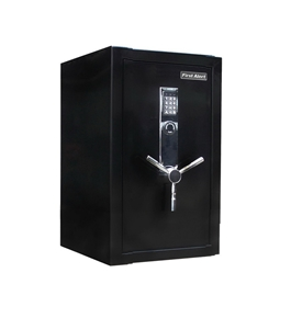 First Alert 2484DF Fire Resistant Executive Safe with Digital Lock, 3.0 Cubic Foot