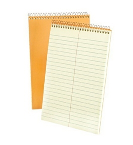 Ampad 25-474 Steno Notebook 6x9, Greentint, Tan Cover, Gregg Ruled, Includes 1001 Misspelled Words 80