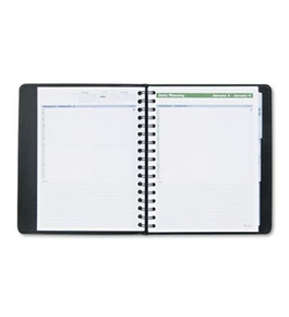 AT-A-GLANCE The Action Planner Recycled Daily Appointment Book, 6 x 9 Inches, Black, 2013 (70-EP03-05)