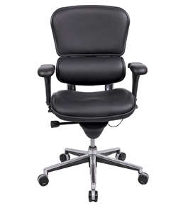 Eurotech Seating Ergohuman Collection High Back Ergonomic Executive Chair in Black Leather
