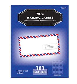 BAZIC 1 X 2 5/8 White Address Labels (300/Pack)