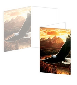 ECOeverywhere Soaring Birthday Boxed Card Set, 12 Cards and Envelopes, 4 x 6-Inches, Multicolored (bc11321)