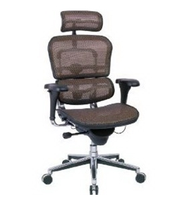 "Eurotech Ergohuman Mesh Chair - 18.1A""22.9"" Seat Height - High-Back Chair With Headrest - Copper"