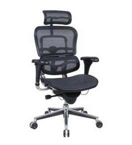"Eurotech Ergohuman Mesh Chair - 18.1A""22.9"" Seat Height - High-Back Chair With Headrest - Green"