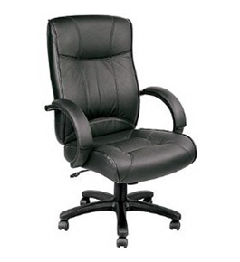 "Eurotech Executive Leather Chair - 18-21-1/2"" Seat Height - Black"