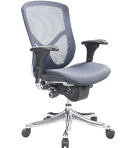 Eurotech Fuzion Luxury Mesh Chair, Blue (FUZ8LX-LO-BLU)