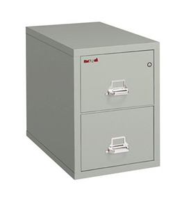 "Fireproof Two Drawer Legal Size Vertical File 31""D Platinum"
