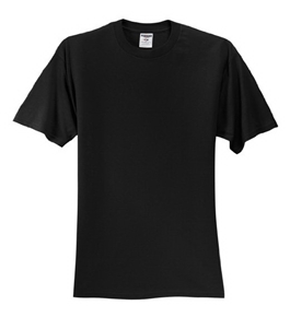 Jerzees 100% Cotton T-Shirt, Black, Male - Apparel