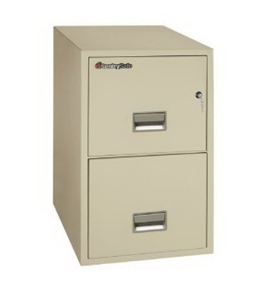 Sentry Safe 2-Drawer Fire and Water-Resistant Vertical Legal File, 20inch W x 31inch D, Dock-to-