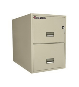 "Sentry Safe Two-Drawer Fire and Water-Resistant Vertical Letter File, 17"" W x 31"" D, White Glove Delivery 2T3131PWG"