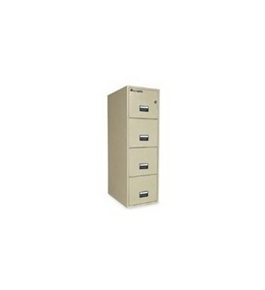 Sentry Safe Vertical Fire File Cabinet
