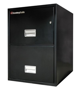 Sentry 2G3100 2 Drawer Legal - Fire Resistant