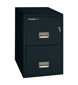 Sentry 2T3140 2 Drawer Letter - Fire and Water Resistant