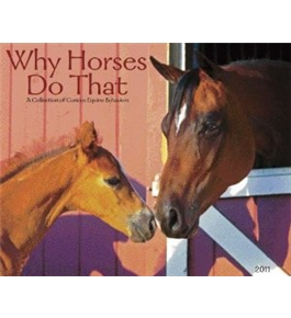 Why Horses Do That 2011 Wall Calendar
