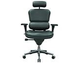 Eurotech Ergohuman LE9ERG, Ergonomic Executive Leather Chair, Black
