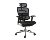 Ergohuman V2 Chair High Back with Black Frame and Mesh