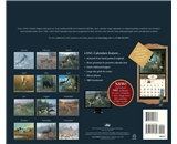 Perfect Timing - Lang 2013 Beyond The Woods Wall Calendar (1001555)