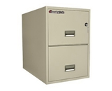 Sentry Safe Two-Drawer Fire and Water-Resistant Vertical Letter File, 17- W x 31- D, White Glove Delivery 2T3131PWG