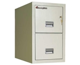 Sentry 2T3120 2 Drawer Letter - Fire and Impact Resistant - 2 hour rated