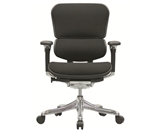 Ergohuman V200FBLK Chair with Black Fabric and Black Frame