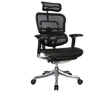 Ergohuman V200HRBLK Chair with Headrest in Black Mesh and Black Frame