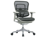 Ergohuman V210MEBLK Chair with Black Mesh and Grey Frame